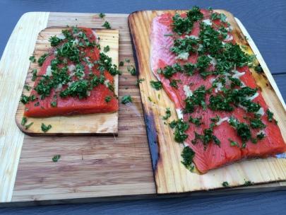 Salmon Uncooked