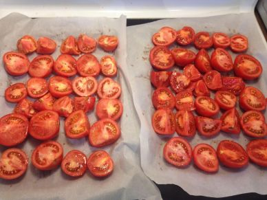 Tomatoes on Pan